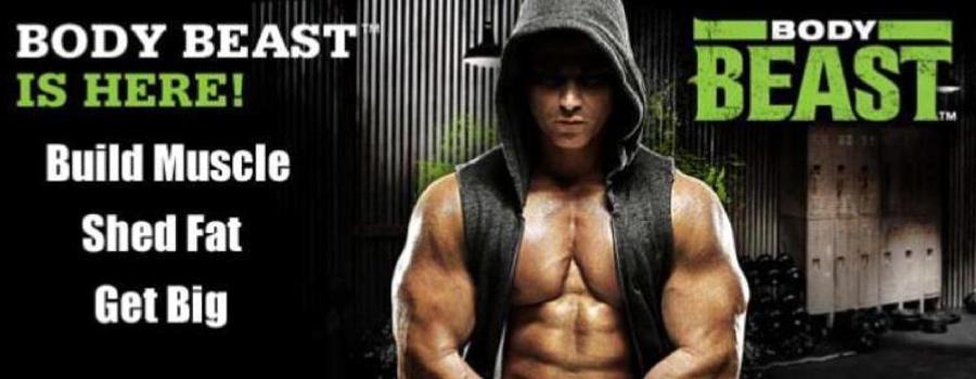 Download Body Beast Workout Chart Sheet
